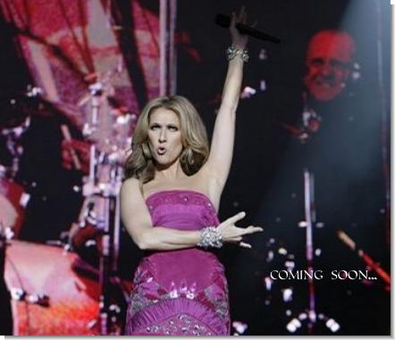 L'uscita del DVD Taking Chances World Tour 2008/2009 è prevista per l'autunno 2009.